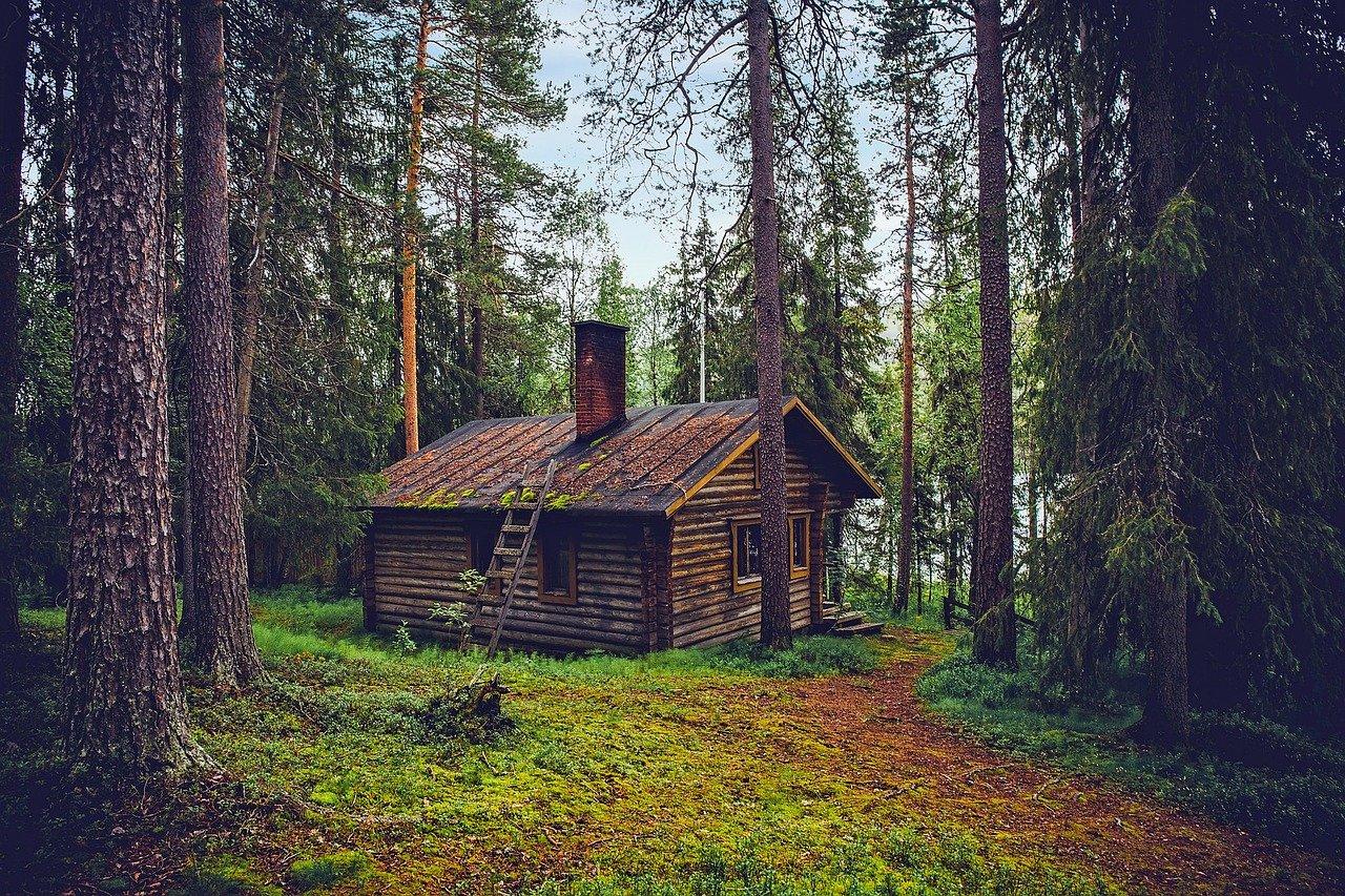 Passer des vacances dans un chalet en bois: un séjour insolite